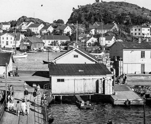Dampskipsbrygga og fiskehallene: Dette er det fotografi tatt sent på 1950-tallet. Ved siden av Bybrua ligger en bygning som rommet fiskebutikken til Erling Kristensen. Ute i Blindtarmen man se fiskekummen hvor det svømte levende torsk. Til høyre ligger fiskehallen til Andreas Martinsen. I bakgrunnen ser man Vestre Øya. Mellom Gierløffs hus (helt til venstre) og Sæthers hus kan man se «garnbua» til Harald Postmyr. Det var her han tørket fiskegarn. I samme bygg samlet øyaguttene ved og annet brennbart til sankthansbålet.