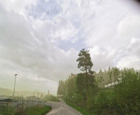 POLLEN: Bla i bildekarusellen for å se lesernes bilder av pollenskyen. Her fra Moelv.