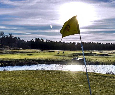 Gode dager: De lokale golfklubbene går meget godt for tiden.