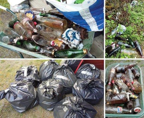 SØPPEL: Her er noe av søpla Kari Storlien (65) fra Åsmarka har plukket den siste tiden.