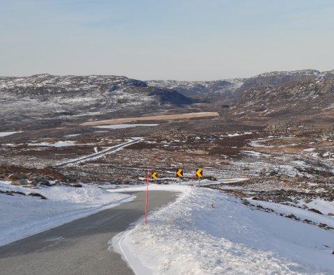 Terrenget nedover frå Kjerredalen mot Beinskjervatnet og folkehjelpshytta skulle ha vore ganske kvitt midt i februar. Denne vinteren er det ikkje slik i Lyngsheia. (Foto: Magnar Riveland)