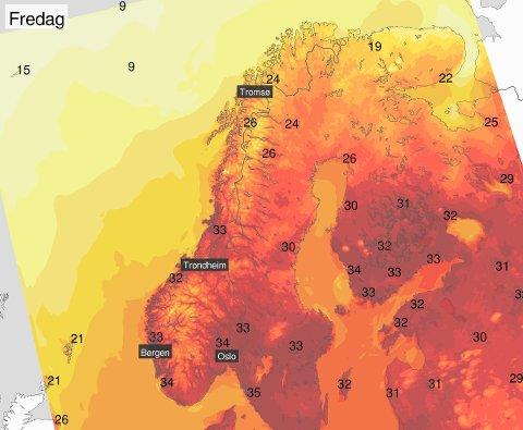 PUH! På fredag ventes opp mot 34 grader i Sandefjord. Foto: Meteorologisk institutt