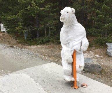 Denne isbjørnen vokter nå bommen til badeplassen på Savalen. Foto: privat