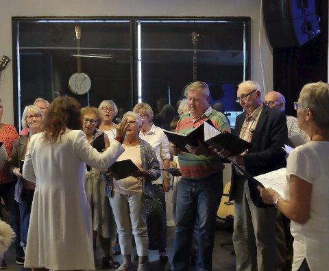 I samband med kommunesamanslåinga søkte Jondal, Odda og Ullensvang om å får vera med i prosjektet « Syngande kommunar.» i 2018. Her frå eit arrangement på Iris scene i Odda.