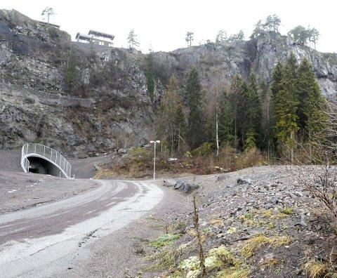 OMRÅDET: Anleggsveien opp fra Sjøskogen kan forlenges opp til Kleivan-området (over). Men det blir ikke billig.