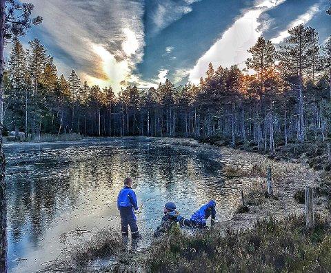 En nasjonalpark skal avspeile variasjonen i norsk natur. På Østlandet er det kun Østmarka som er aktuell som nasjonalpark på grunn av områdets intakte skogslandskap.