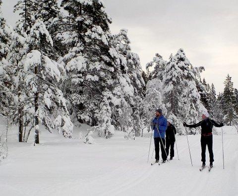 JULEKORT: For (fra v.) Erling Fæste, Kajsa Onshuus og Morten Onshuus. Foto: Lars Ivar Hordnes