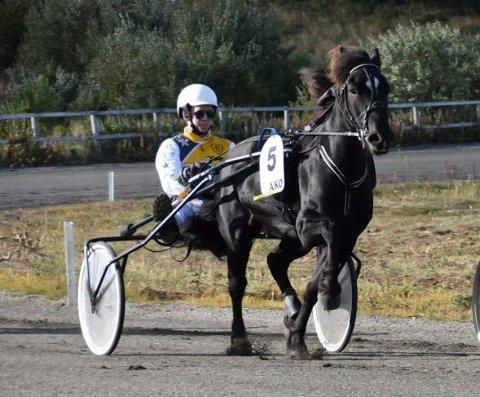 Travkusk Sigmund Jakobsen har kjørt 100 løp hittil i år. han har ni seire, ti andreplasser og ti tredjeplasser. Han har tilsammen kjørt inn 425.000 så lagt i år.