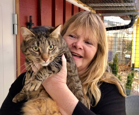SMITTE: – Det er en stor utfordring å stoppe smitten av kattaids på Hadeland, sier Rita Halvorsen i Hjelp pus Hadeland. Denne katten er frisk som en fisk.