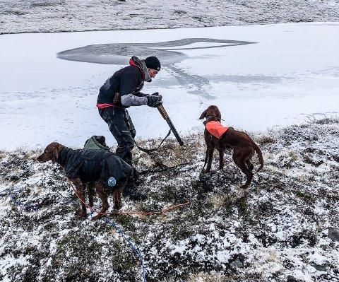 Hunden Lexi (til venstre) og Lars Ingmar Nyhus er på land igjen etter den dramatiske redningsaksjonen. Her ser vi råka og Lars Ingmars løype ut dit. På andre sida kan vi skimte sporene etter Endre ned til vatnet. Maija, med rødt dekken, var mer interessert i et par ryper i nærheten enn av dramatikken i vatnet.
