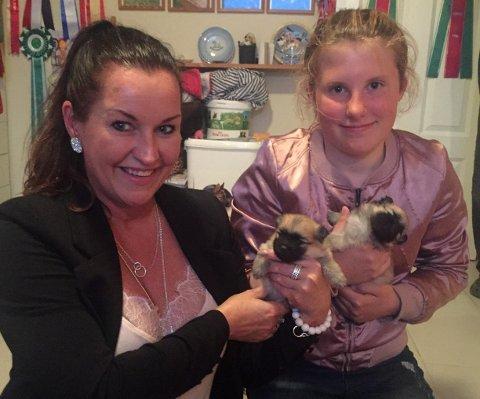 Cindy Wollan og datter Izabella (11) ønsker seg en kleinspitz-valp, men turen til kennelen ble mer utfordrende enn forventet.