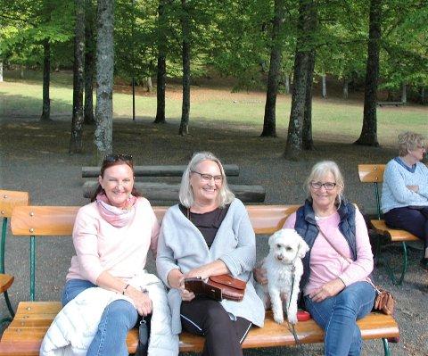 SØNDAGSTUR: Trine Solberg, Bente Utness, Annebet Hallensvet og hunden Eira koste seg i bøkeskogen