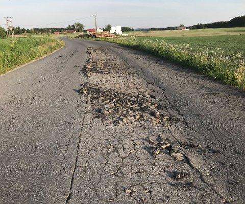 BEHOV: Mange veier ser slik ut i dag. Flere kan få et realt løft.