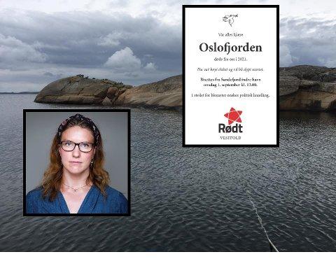 FÅR KRTIKK: Det politiske partiet Rødt får kritikk etter dørdsannonse. – Det lever vi godt med i en så alvorlig sak, sier Maren Njøs Kurdøl, som er leder av Rødt i Vestfold og Telemark. FOTO: Bjerkaas/Pedersen