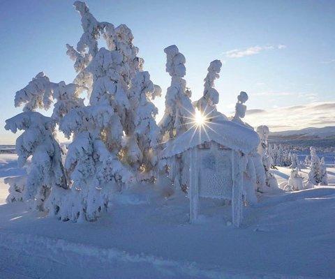 VINTERVAKKERT: Skitur i vakre omgivelser. Foto: Jorunn Nygaard