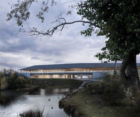 NATUR: Natur og by smelter sammen i Jon Grasdal og Anton Xerxes Bomans prosjekt «Neste stasjon». (Illustrasjon: Jon Grasdal og Anton Xerxes Boman)