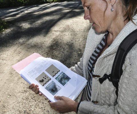 Funn: Anne Traaholt viser bilder av flintfunn fra de registrerte steinalderboplassen som har gått med i vann- og avløpsarbeidet. (Foto: Kjersti Halvorsen)