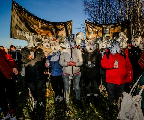 Masker: Ulvetilhengerne med med demonstrasjon utenfor Hotell Jeløy Radio i forbindelse med regjeringsforhandlingene.