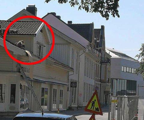 FARLIG ARBEID: Dette arbeidet pågikk på et tak i Porsgrunn fredag. Tilsynsleder Bjørn Tore Hansen i Arbeidstilsynet Sør-Norge fastslår med en gang at her skulle det ha vært satt opp et stillas.