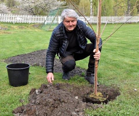 KOMMUNAL GAVE: Ordfører Knut Kvale planter tuntreet som kommunen har gitt i gave til Østsiden Velforening. – Imponerende dugnadsinnsats her på Fjerdingstad. Dette viser hvor sterkt frivilligheten står i Øvre Eiker, sier han.