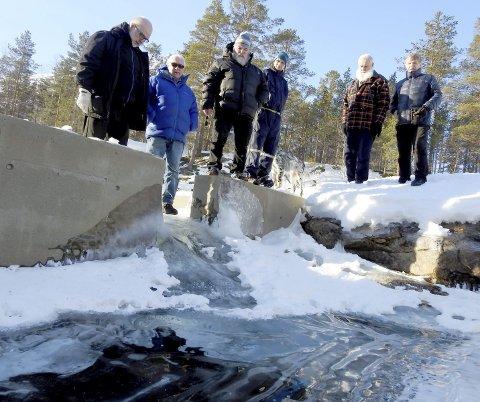 FROSSET: Det er ikke krav til minstevannføring i Skjoma. På de hardeste vintrene krymper den til en bekk der vanngjennomstrømningen bare er på noen titalls liter i sekunder. Slik så det ut i 2018.
