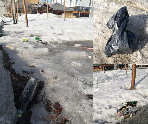 SØPPEL: Wiggo Kjellmann knipset disse bildene etter at han plukket opp søppel i Alta sentrum. – Ja, det er virkelig nå vi ser hvor mye dritt som har blitt kastet rett ned i løpet av vinteren, sier han.