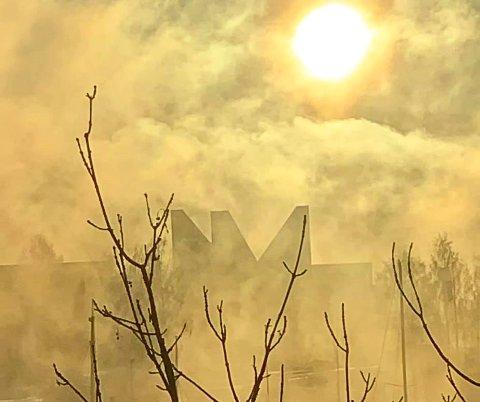 DELTAR: Vi starter konkurransen med dette bildet av frostrøyk i lav januarsol.