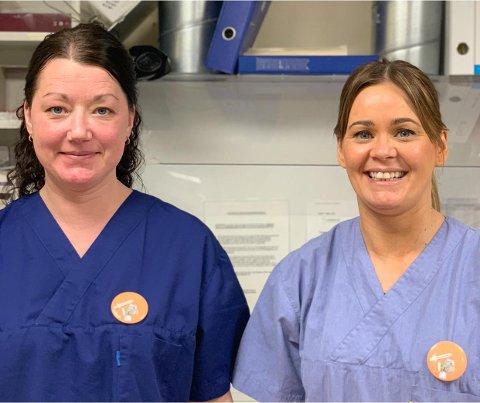 Ledende helsesykepleier Annie Franing og fagutviklingssykepleier Hilde Albinussen. Foto: Saltdal kommune