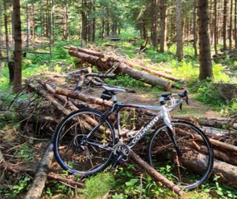 Slik så det ut på turstien da en syklist skulle gjennom torsdag morgen.
