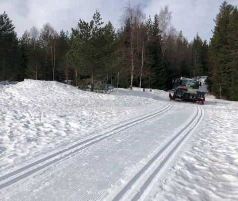 TORSDAG MORGEN: – Det er sjelden det er så fine skiforhold nå rett før påske, sier løypekjører i Drammen Torbjørn Bogen. Dette bildet ble tatt ved Landfalltjern torsdag morgen.