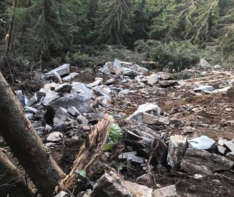 Store ødeleggelser i terrenget der jordraset gikk mellom gardene Løypet og Sætra i Baklikjølvegen i Østre Gausdal. Raset gikk helt inntil turstien til Kvileplassen.