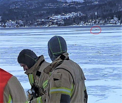 REDNINGSAKSJON: Asker og Bærum brann og rednings (ABBR) avdeling i Røyken gjorde alt de kunne i forsøket på å redde rådyret som hadde flyktet ut på den tynne isen inne ved Gjerdalsbukta i Drammensfjorden.