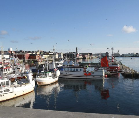 REFSER HAVNA: Når vinterstormene setter inn, er fiskerne redde for båtene som ligger til kai i Vardø Havn. De mener Vardø har gjort altfor lite for å tilfredsstille behovene til fiskerne. Nå kan de se fram til nye flytebrygger.