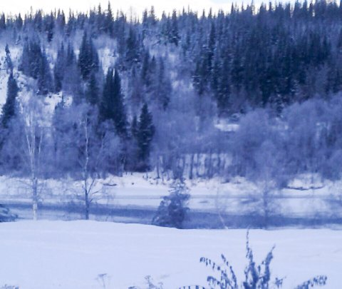 Så langt denne vintersesongen har Storforshei vært den kaldeste plassen i Nordland fylke..