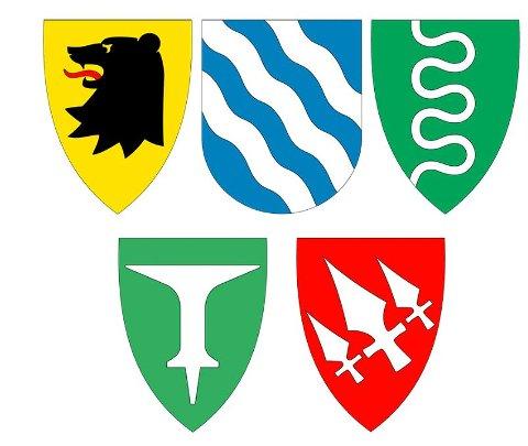 Disse fem kommunevåpnene skal erstattes av et helt nytt healdisk skilt når de fem kommunene slås sammen fra 1. januar 2020. Øvre rekke fra venstre: Eidsberg, Askim og Hobøl. Under: Trøgstad (t.v.) og Spydeberg. Legg merke til at Askim er eneste uten spiss bunn.