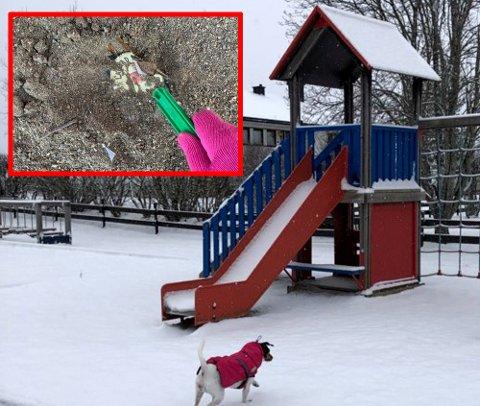 GROTESK: I sanden var det gravd ned flere knuste flasker på lekeplassen. Flaske-funnet ble gjort mandag, da det ennå ikke lå snø på bakken.