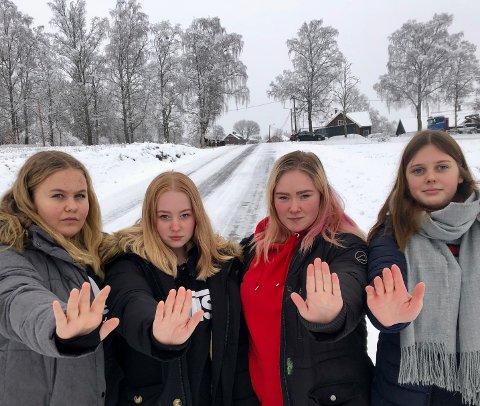 STOPP: – Vi står fram med denne historien for å opplyse om alvoret. Bilene må stoppe for hest og ryttere, sier fra venstre, Maja Nestaker (14), Ronja Johansen Solberg, Lise Maria Pedersen og Karen Wirstad Støen.