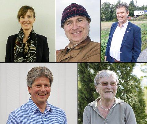 BLANT DE 15 PÅ INNTEKTSTOPPEN I AREMARK: Elin Buer (f.v.), Jacob Natvik Skolleborg, Geir Aarbu, Alf Ulven og Hanne Loe Lexerød er fem av de 15 i Aremark som tjente mest i 2017.