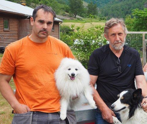 FORTVILA: Sauebøndene John Rolf Bjørnevåg og Leidulf Veka er både fortvilte og rasande over situasjonen med jerv i fjellet.