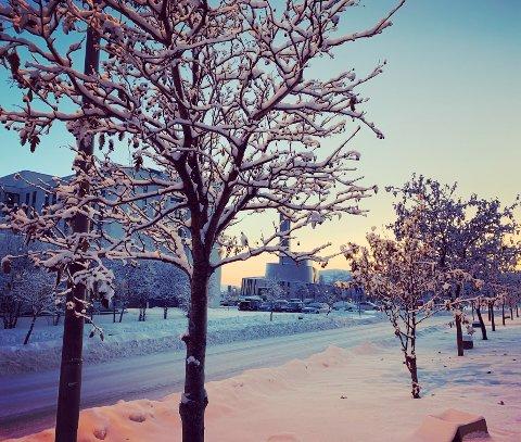 HVIT JUL?: Det er et spørsmål mange stiller seg de siste dagene før jul. Mange håper nok at det kan bli like snørikt som i Alta i november i 2019. I år er det meldt temperatur ned i -14 grader i romjula.