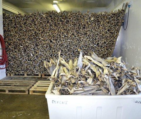 GODT ÅR: 2019 ble et godt år for Røst Fiskeindustri AS