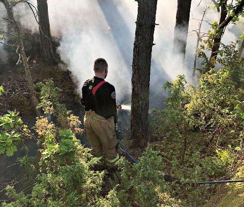 BRANN: Brannmannskapene pøser på med vann etter at det ble oppdaget brann i terrenget like i nærheten av noen hytter på Budalstranda.