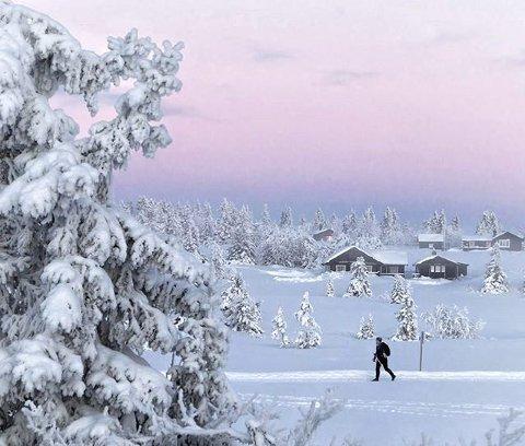 Litt rosa: Kald og vakker dag på Sjusjøen. Foto: Anne Marit Eide