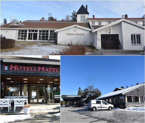 Sykehotell: Kommunen har fått tilbud fra både Hotell Hadeland, Sanner hotell og Lygnasæter hotell med tanke på å bruke lokalene deres til sykehotell.