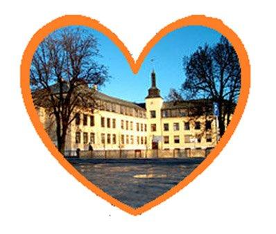 SIGNALBYGG: Hønefoss skole er med og danner en kulturhistorisk enhet på nordsiden.