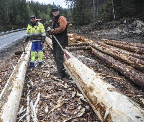 Jobb: Jon Sisjord (til venstre) og Klas Våle fra Gransherad har jobben med å barke dobbene for hånd.