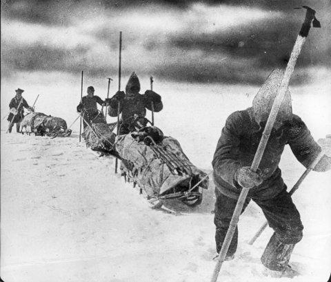 Polfarerne som virkelig skapte historie, hadde med seg lærdom både fra inuittene og samene. I 1888 var Samuel Balto og Ole Nilsen fra Karasjok med på kryssinga av Grønlandsisen, ledet av Fridtjof Nansen (bildet). I moderne tid synes det som om kunnskapen tapes eller neglisjeres. Det er nå er på tide å ta tak i dette, skriver politimestrene i Finnmark og Nordland.
