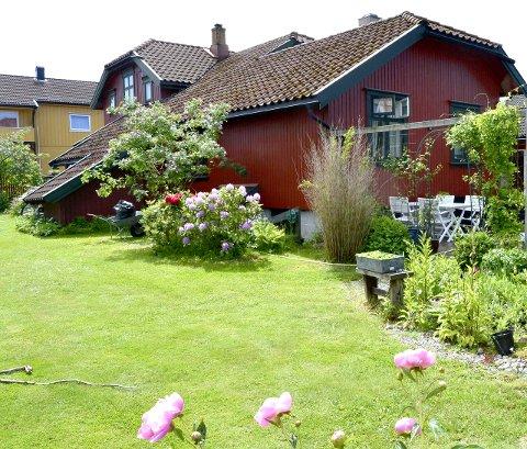 Snart vår: Slik skal hagen i Revgata på Torstrand se ut om kun få uker. Foto: Privat.