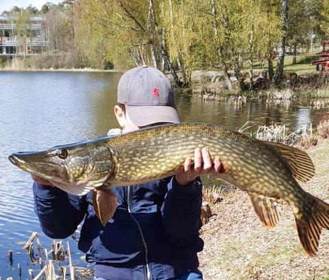 STORFANGST: Vekt hadde ikke den unge fiskeren med seg. Trolig er det flere store gjedder der fisken kommer fra.