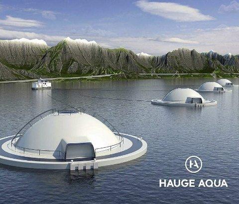 «EGGET»: Slik ser konseptet Egget ut. Marine Harvest har fått seks testkonsesjonar på 780 tonn kvar til å prøve dette.